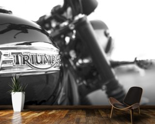 Triumph Mural Wallpaper Wall Murals Wallpaper