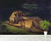 Lion Resting (oil on canvas) wallpaper mural in-room view