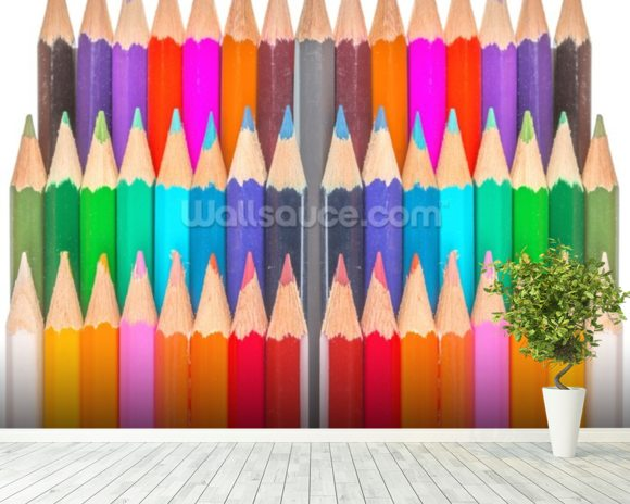 Rows of Coloured Pencils wall mural room setting