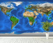 World Map and Landforms wallpaper mural in-room view