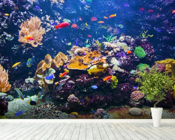 Fish City mural wallpaper room setting