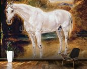 White Horse (oil on canvas) mural wallpaper kitchen preview