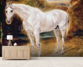 White Horse (oil on canvas) mural wallpaper living room preview