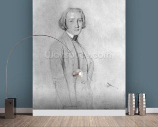 Franz Liszt (1811-86) Rome, 29th May 1839 (graphite & white highlights on paper) (b/w photo) wall mural