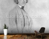 Franz Liszt (1811-86) Rome, 29th May 1839 (graphite & white highlights on paper) (b/w photo) wall mural kitchen preview