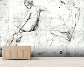 Study for the Turkish Bath (graphite on paper) (b/w photo) wallpaper mural living room preview