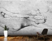 Study for The Grande Odalisque (graphite on paper) (b/w photo) (see also 233244) mural wallpaper kitchen preview