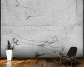 Studies for The Grande Odalisque (graphite on paper) (b/w photo) (see also 233243) wall mural kitchen preview
