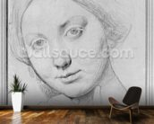 Louise de Broglie, Countess of Haussonville, c.1842 (graphite on paper) wallpaper mural kitchen preview