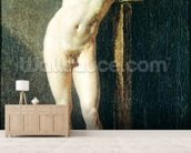 Study of a Man, c.1801 (oil on canvas) mural wallpaper living room preview