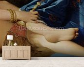 Detail of The Grand Odalisque, 1814 (oil on canvas) (detail of 267671) wall mural living room preview