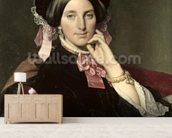 Madame Gonse, 1852 (oil on canvas) wall mural living room preview