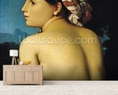 Female nude, 1807 (oil on canvas) wall mural living room preview