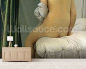 The Bather, called Baigneuse Valpincon, 1808 (oil on canvas) wallpaper mural living room preview