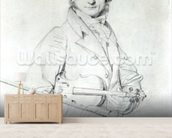 Portrait of Niccolo Paganini (1782-1840) 1819 (pencil on paper) wall mural living room preview