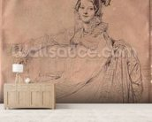 Portrait of Madame Louis-Nicolas-Marie Destouches (1787-1831) 1816 (pencil on paper) wallpaper mural living room preview