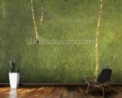 Farmhouse with Birch Trees, 1900 (oil on canvas) wallpaper mural kitchen preview