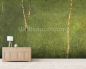 Farmhouse with Birch Trees, 1900 (oil on canvas) wallpaper mural living room preview