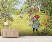 The Apple Harvest mural wallpaper living room preview