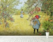 The Apple Harvest mural wallpaper in-room view