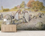 Digging Potatoes, 1905 wallpaper mural living room preview