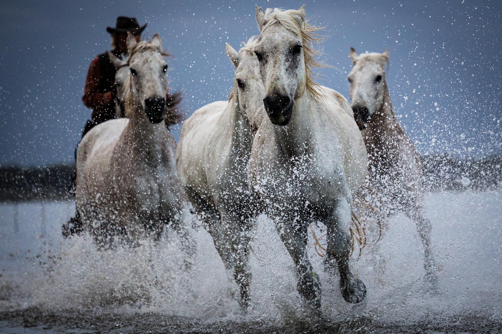 cowboy horses wall mural cowboy horses wallpaper three cowboys wall mural contemporary wallpaper