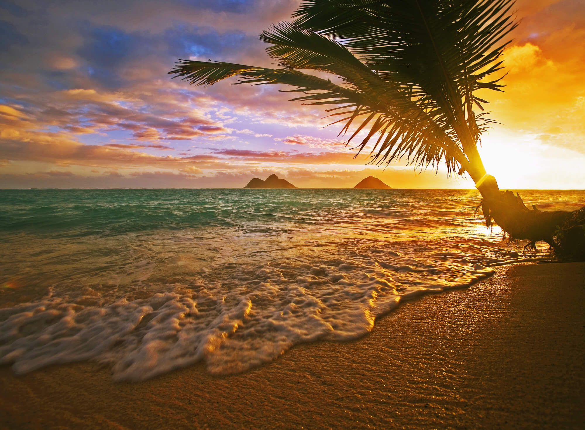 beach wallpaper wall murals wallsauce lanikai beach at sunrise hawaii mural wallpaper