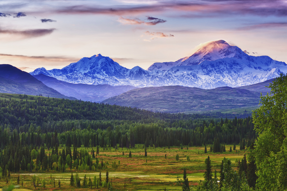 Mt. Mckinley And Mt. Hunter Seen From Susitna Valley wall mural