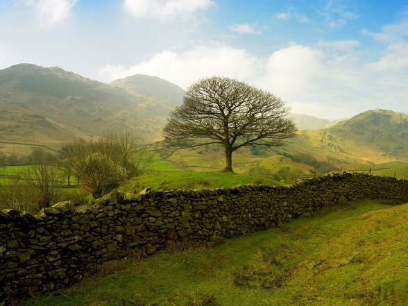 Rural Lake District Hills wall mural