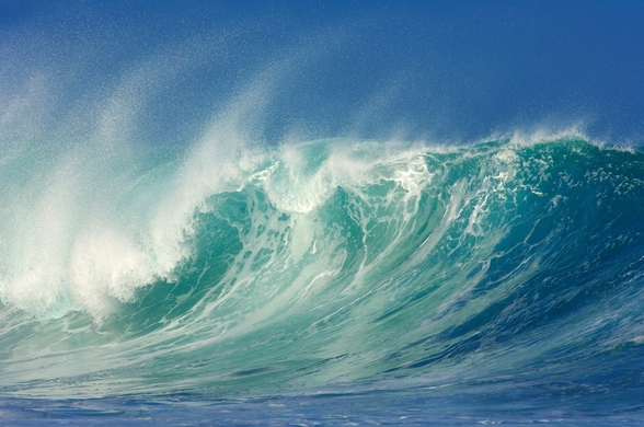 Big Waves, North Shore, Hawaii mural wallpaper