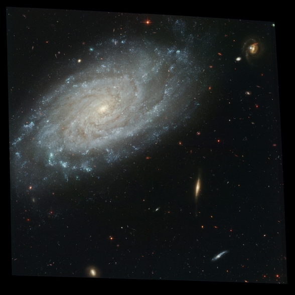 Spiral Galaxy NGC 3370, Home to Supernova Seen in 1994 wall mural