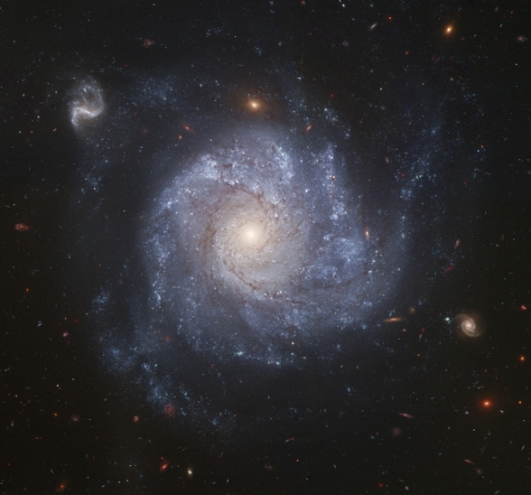 Full ACS Field of NGC 1309 wall mural
