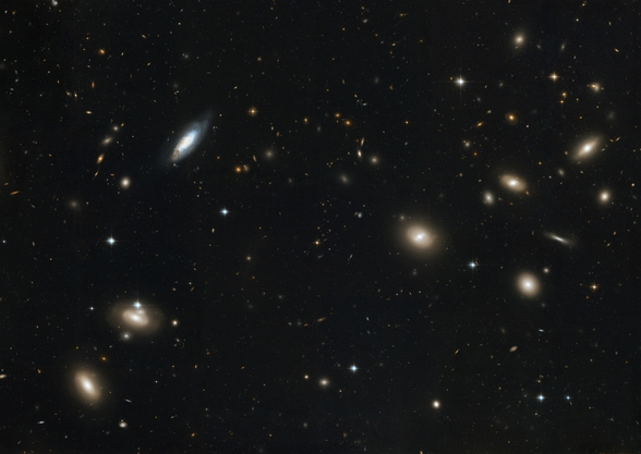 Hubble's Sweeping View of the Coma Cluster of Galaxies wall mural