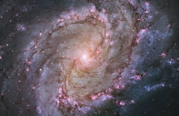 Spiral Galaxy M83 mural wallpaper