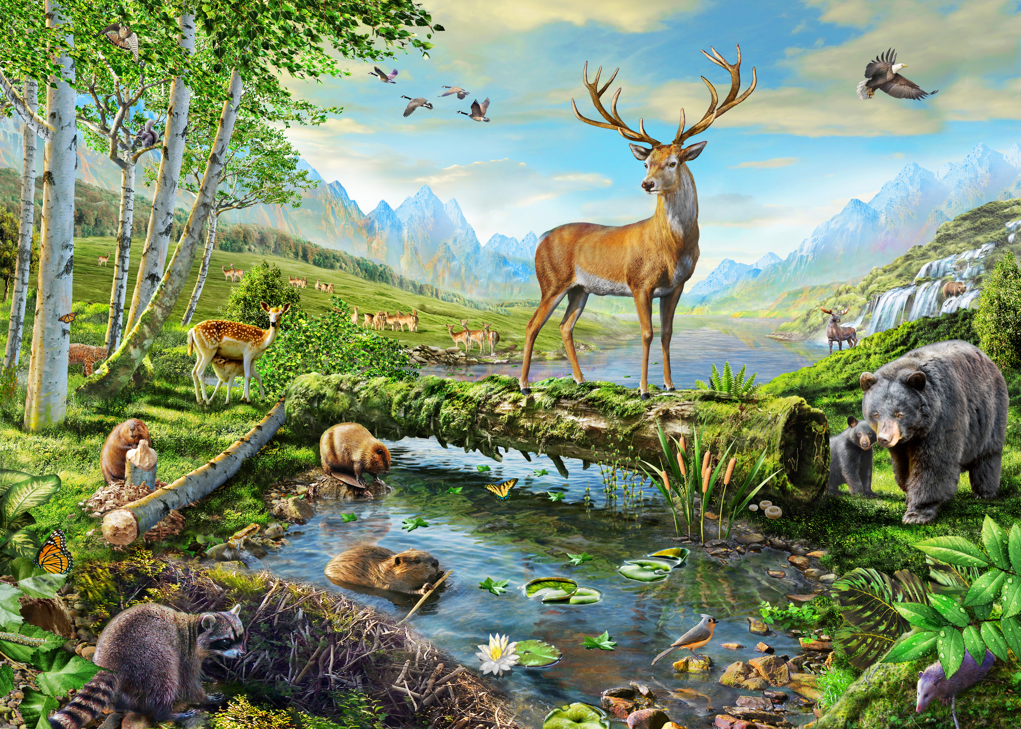 Wildlife splendor us wall mural wildlife splendor us for Deer wallpaper mural
