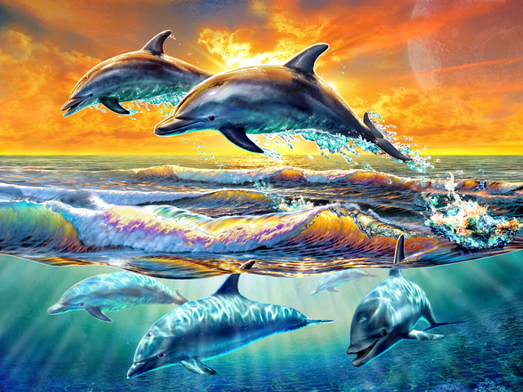 Dolphins at Dawn mural wallpaper