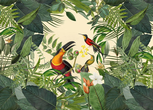 Toucans in the Jungle mural wallpaper