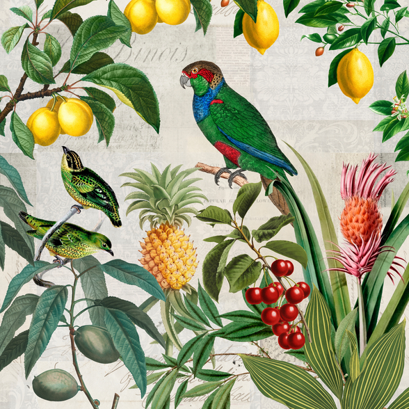 Fruit Paradise wallpaper mural