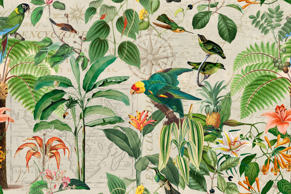Kingdom of Birds wall mural