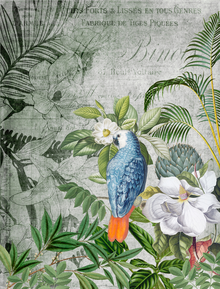Wistful Parrot wallpaper mural