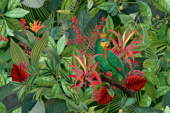 Parrot King wallpaper mural