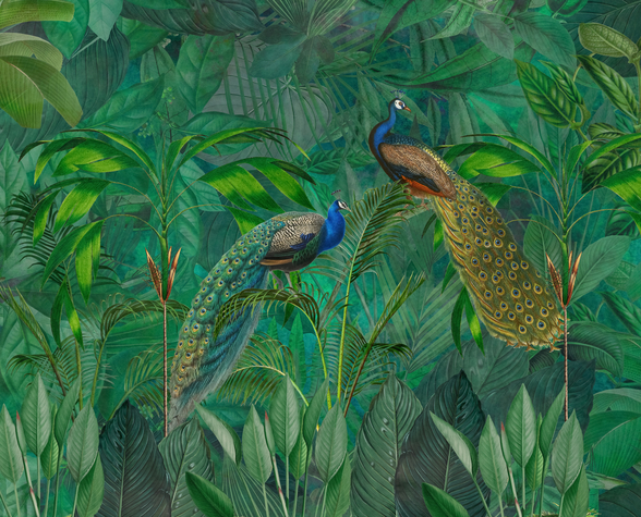 Peacock Paradise Jungle wallpaper mural