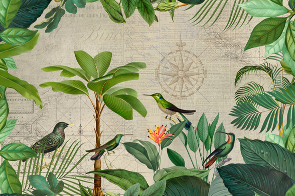 Tropical Journey Birds mural wallpaper