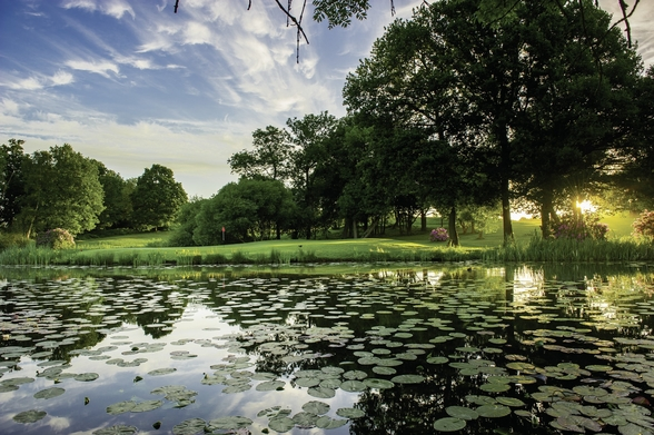 Dawn Lily Pond, The Hertfordshire Golf & Country Club, England mural wallpaper