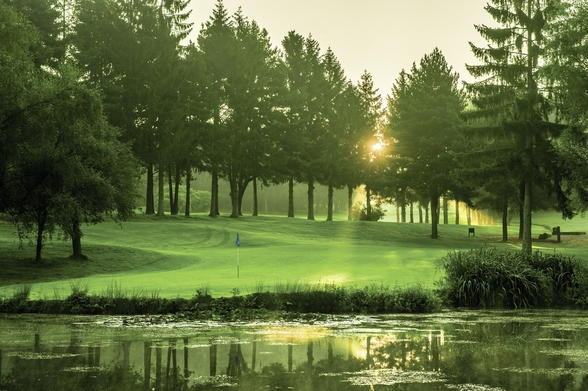 Dawn Sunray, Cottesmore Hotel Golf & Country Club, West Sussex, England wall mural