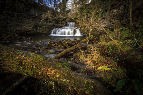 Cotter Force Yorkshire wallpaper mural