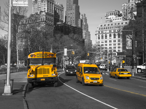 New York School Bus and Taxis wall mural