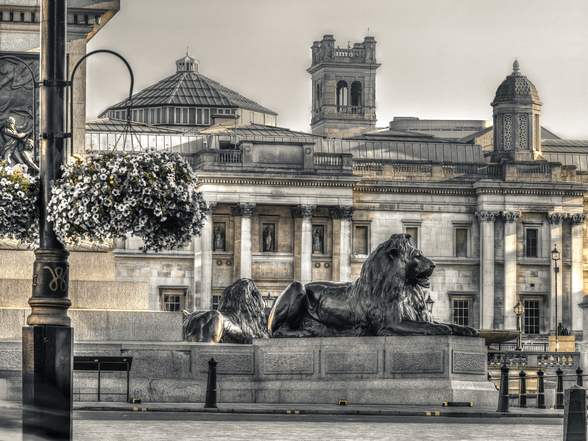 Statue of Lion at Trafalgar Square mural wallpaper