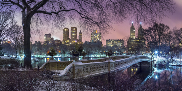 Central Park with Manhattan Skyline Lights mural wallpaper