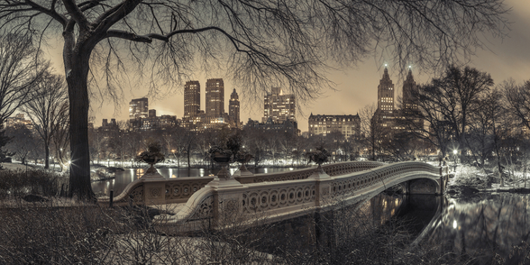 Central Park with Manhattan Moody Lights wall mural